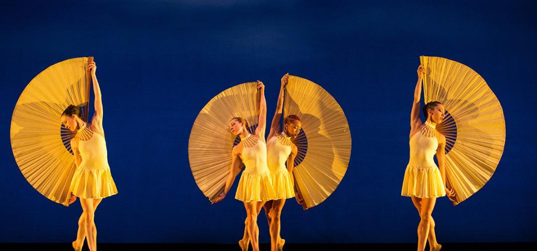 Momix - A unique show at the Champs Elysées theatre