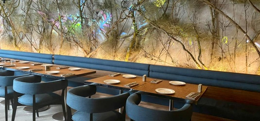 """FOREST - restaurant of the""""Musée d'art moderne"""" signed byJulien Sebbag"""